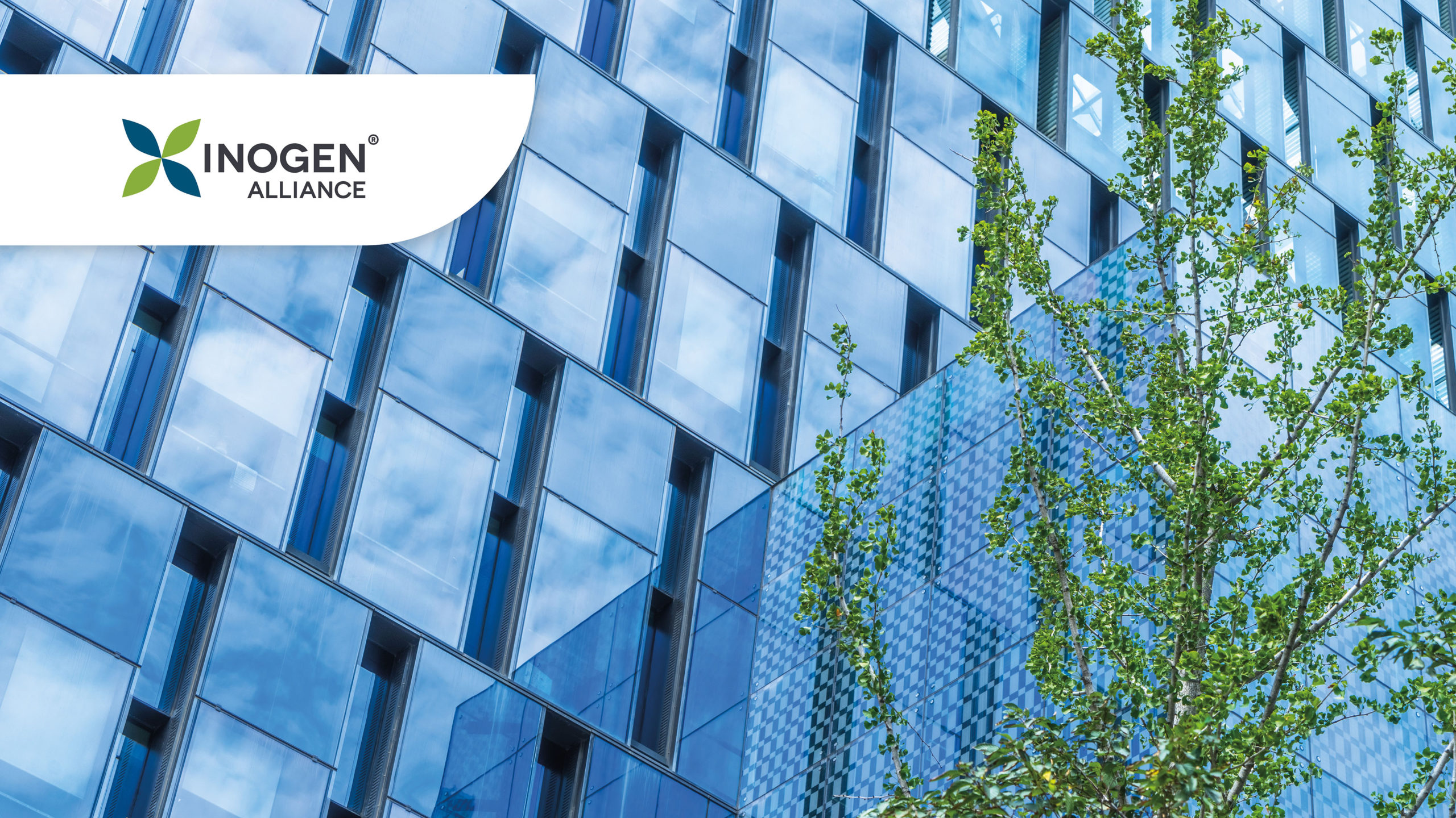 Inogen Alliance – Global Thinking. Local Delivery.